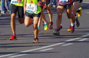 Maratona de 90 Dias de Eric Worre ou Maratona Multinível Digital de 45 dias de Leandro Fonseca?